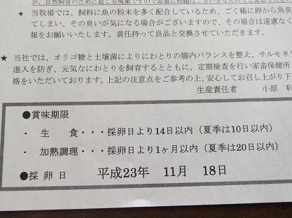 2011_1119(003).jpg