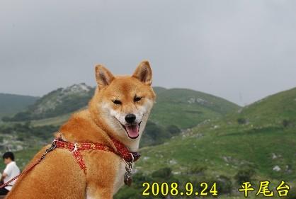 2008.9平尾台