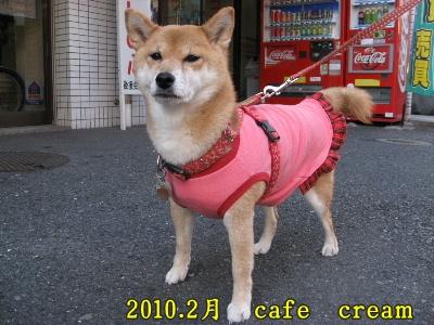 2010.2カフェ クリーム