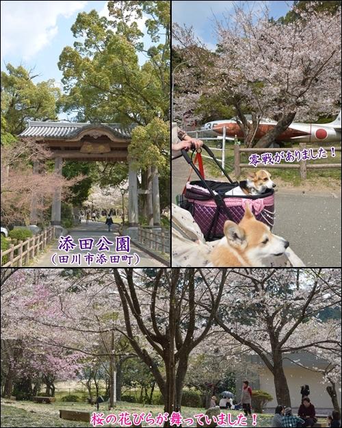 添田公園1