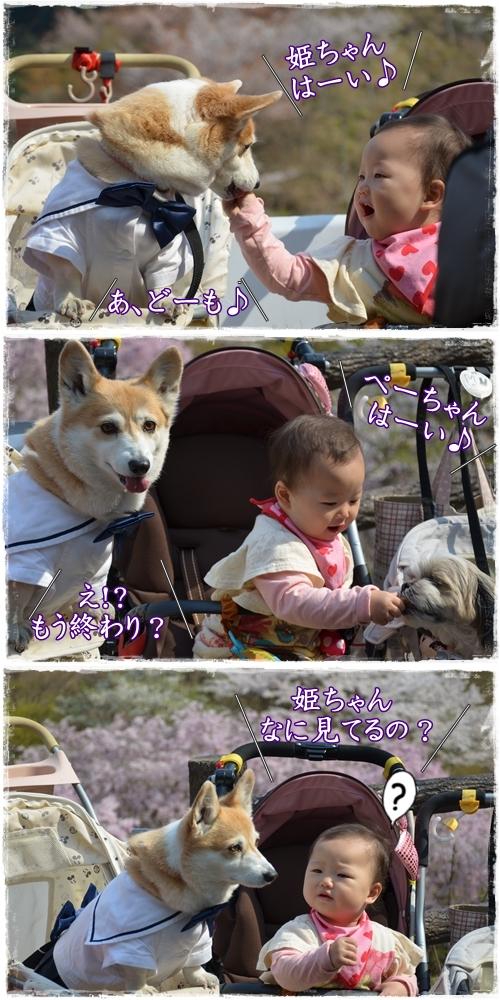 添田公園3