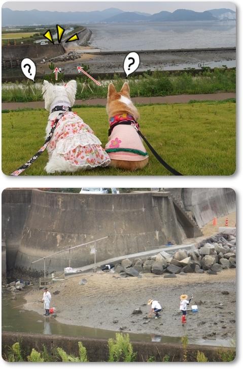 すも&姫2