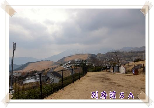 2012_0128(002).jpg