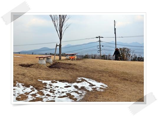 2012_0128.jpg