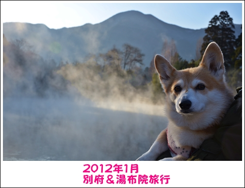 2012_0129(022).jpg