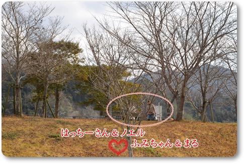 2012_0129(057).jpg