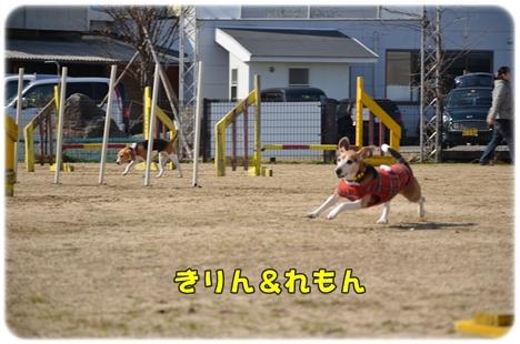 2012_0212(029).jpg