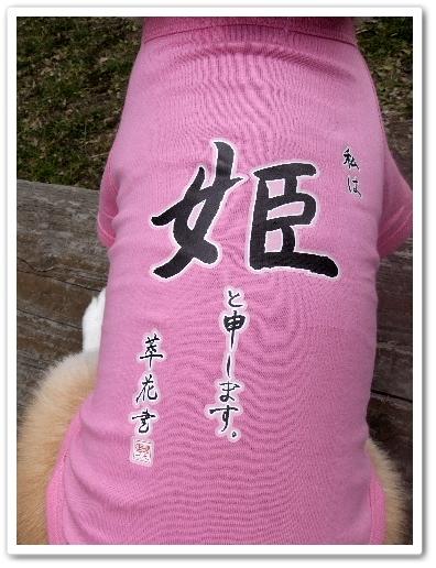 2012_0221(002).jpg