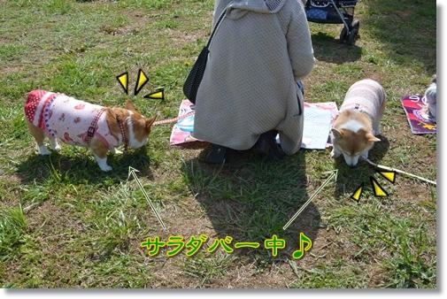 2012_0321(034).jpg