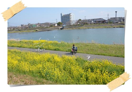 2012_0328.jpg