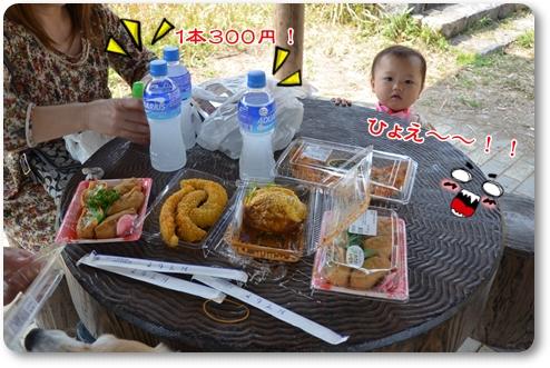 2012_0409(007)-crop.jpg