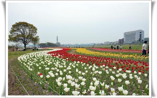 2012_0419(015).jpg