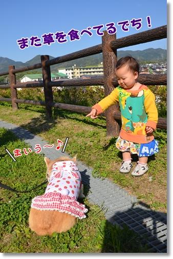 2012_0426(046).jpg