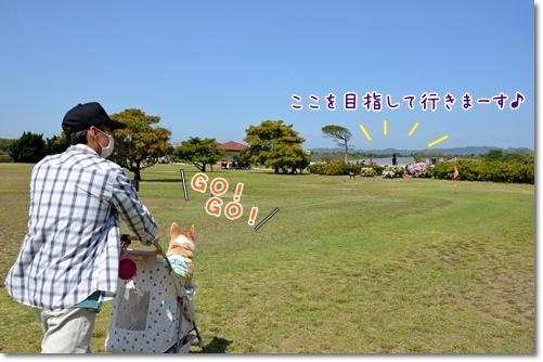 2012_0428(006).jpg
