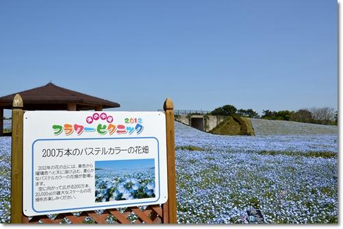 2012_0428(028).jpg