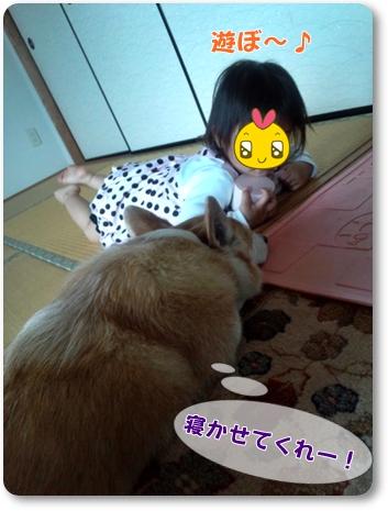 2012_0503.jpg