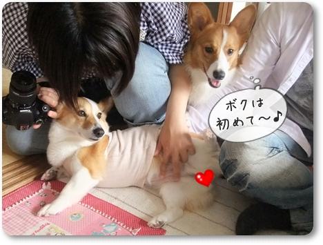 2012_0504.jpg