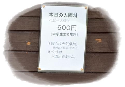 2012_0510(025)-crop.jpg
