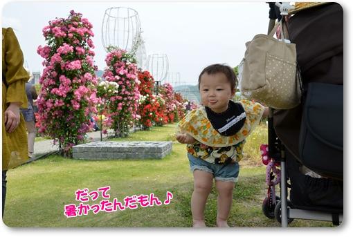 2012_0519(073).jpg