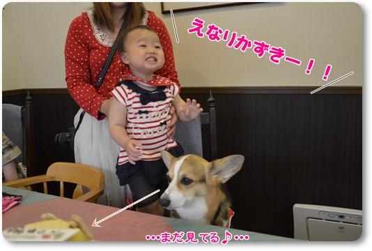 2012_0529(058)-1.jpg