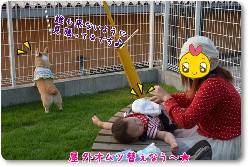 2012_0529(077)-1.jpg