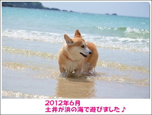2012_0603(078)-1_20121229234814.jpg