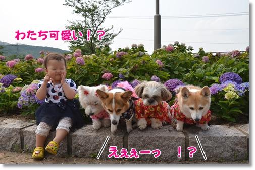 2012_0613(063)-1.jpg