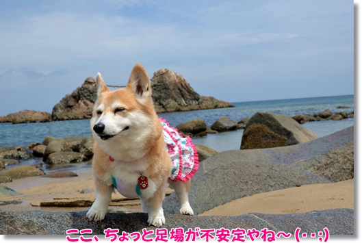 2012_0630(016)-1.jpg