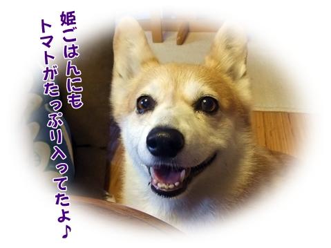 2012_0719(013)-1.jpg