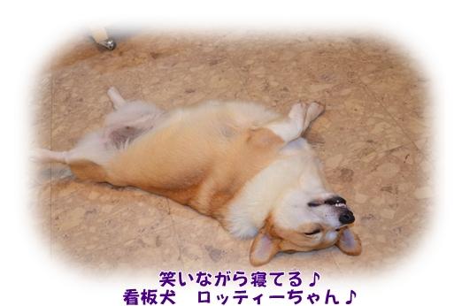 2012_0729(036)_20120804010832.jpg