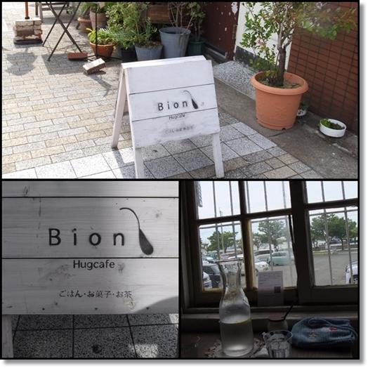 bion2_20120902214029.jpg