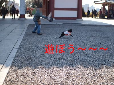 s-2010_02140014.jpg