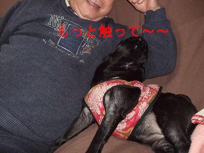s-2010_03160009.jpg