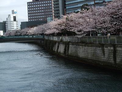 s-2010_04010012.jpg