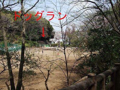 s-2010_04100013.jpg