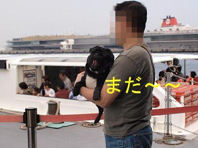 s-2010_04110048.jpg
