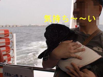 s-2010_04110059.jpg