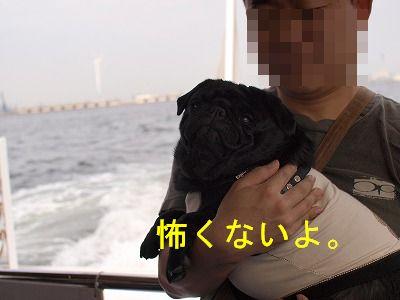 s-2010_04110063.jpg