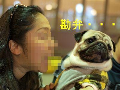 s-2010_04170066.jpg