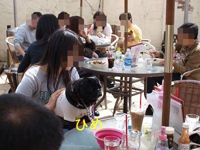 s-2010_04180046.jpg
