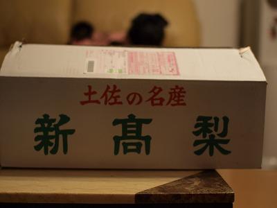 s-2010_10080002.jpg