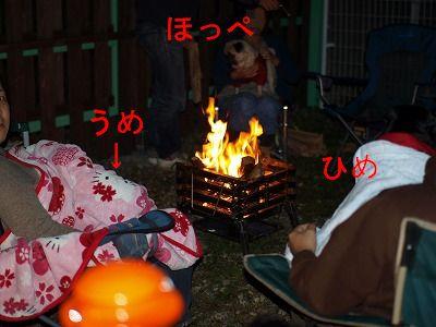 s-2010_10110123.jpg