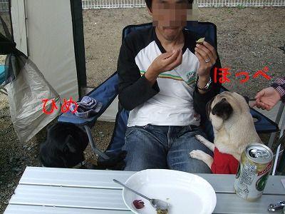 s-2010_10110218.jpg