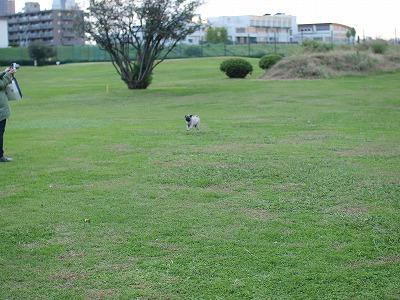 s-2010_11020043.jpg