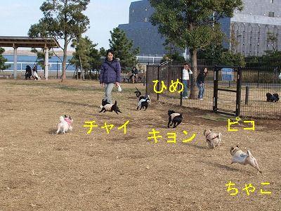 s-2010_12120027.jpg