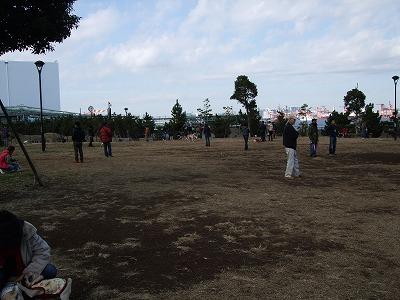 s-2010_12120060.jpg