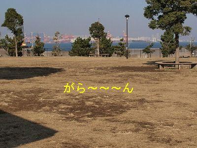 s-2010_12200005.jpg