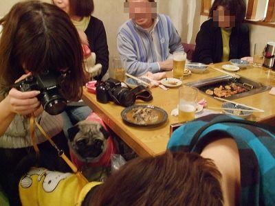 s-2011_01160075.jpg