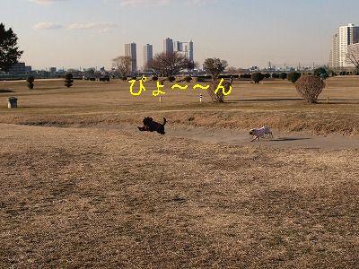 s-2011_01200010.jpg