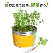 -2野菜栽培セット リトルガーデンプロ応募